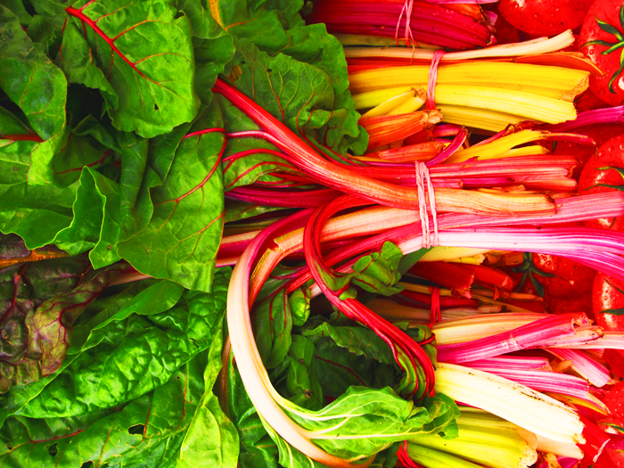 Rainbow Swiss Chard, New York