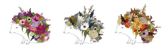 Hedgehog print by Katie Vernon