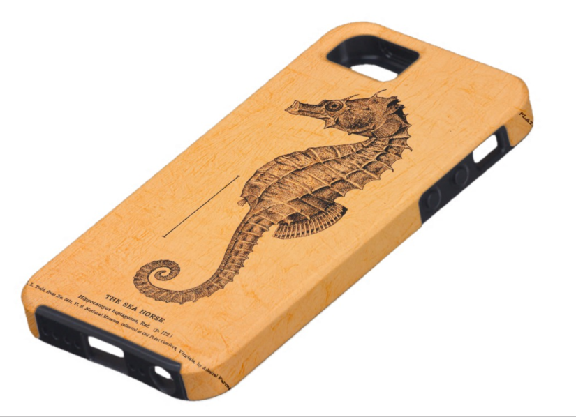 custom iPhone case with seahorse illustration