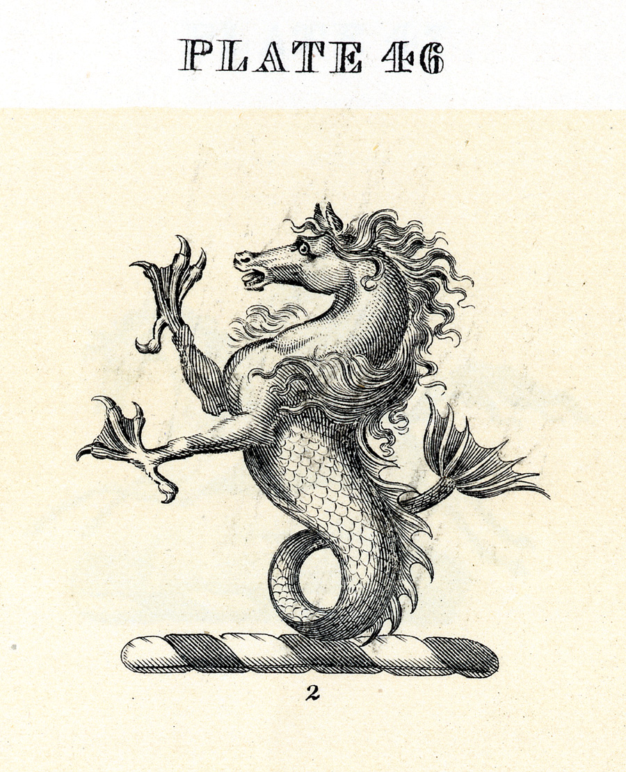 seahorse crest from Fairbairn's Book of Crests