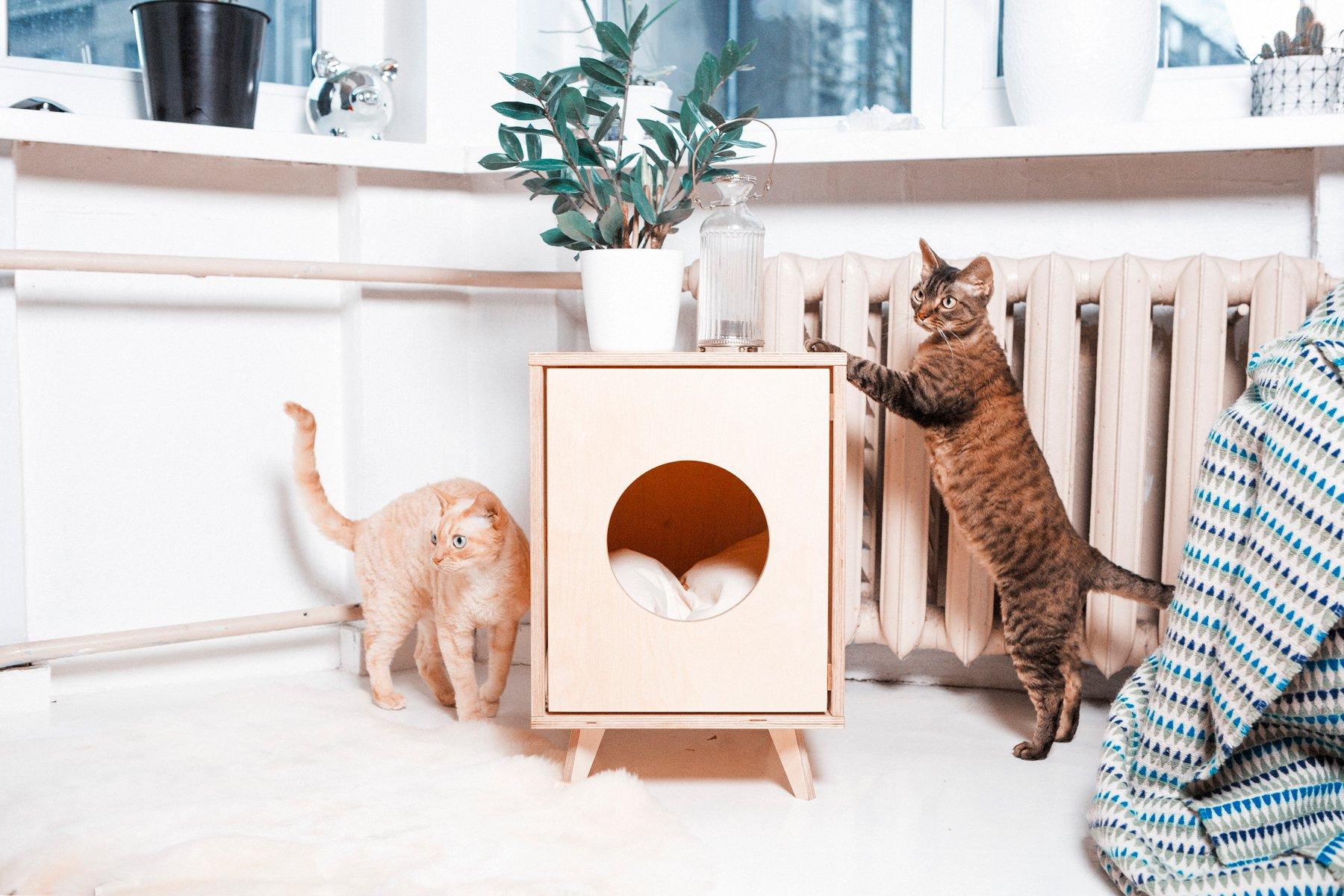 hidden cat litter box side table