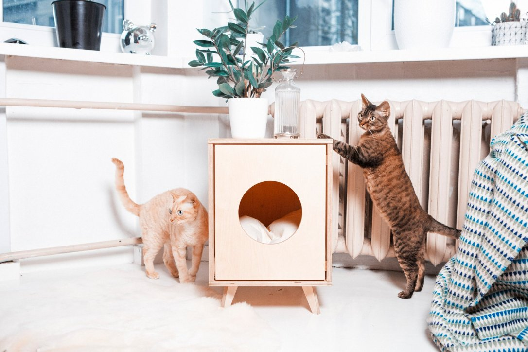 hidden cat litter box side table